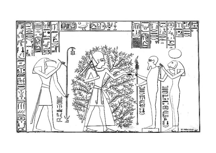 Coloring page Ramses and the tree of life