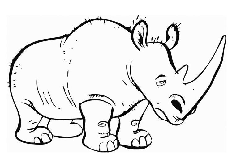 Free Printable Rhinoceros Coloring Pages For Kids | Cute coloring ... | 531x750