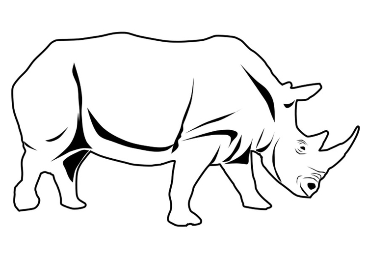 Rhino Coloring Page - Art Starts for Kids | 531x750