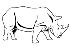 Coloring pages rhinoceros