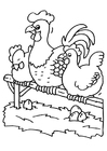 Coloring page rooster and chickens