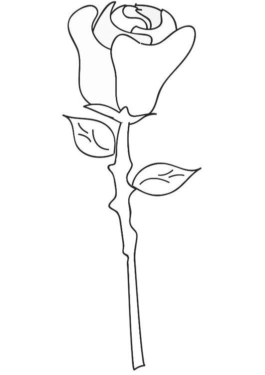 Hearts and Roses coloring page | Free Printable Coloring Pages | 750x531