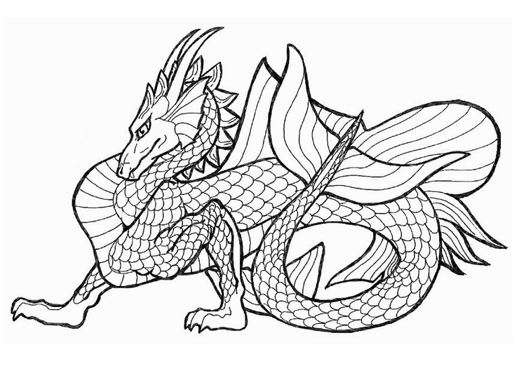 Coloring page sea dragon