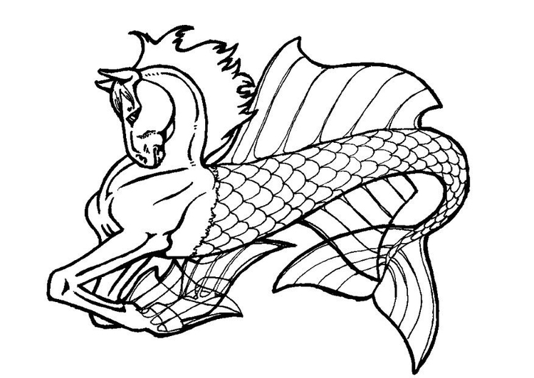 Coloring page sea horse