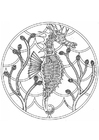 Coloring pages sea horse mandala