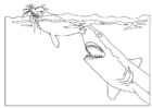Coloring page shark attacks seal