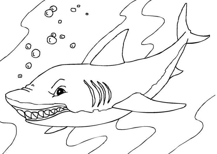 Coloring page shark