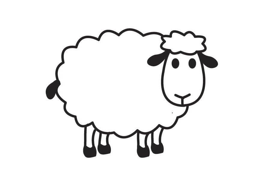 Coloring page Sheep - img 17791.