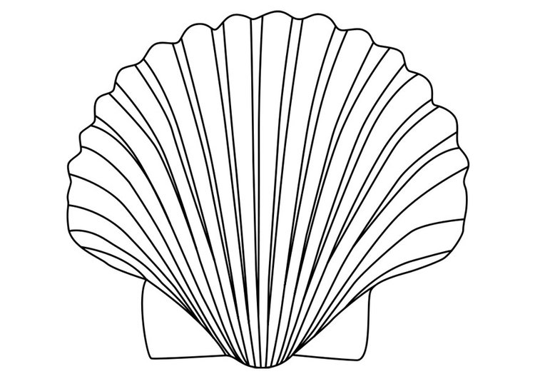 Coloring page shell of saint James