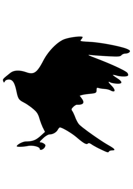Coloring page silhouet eagle