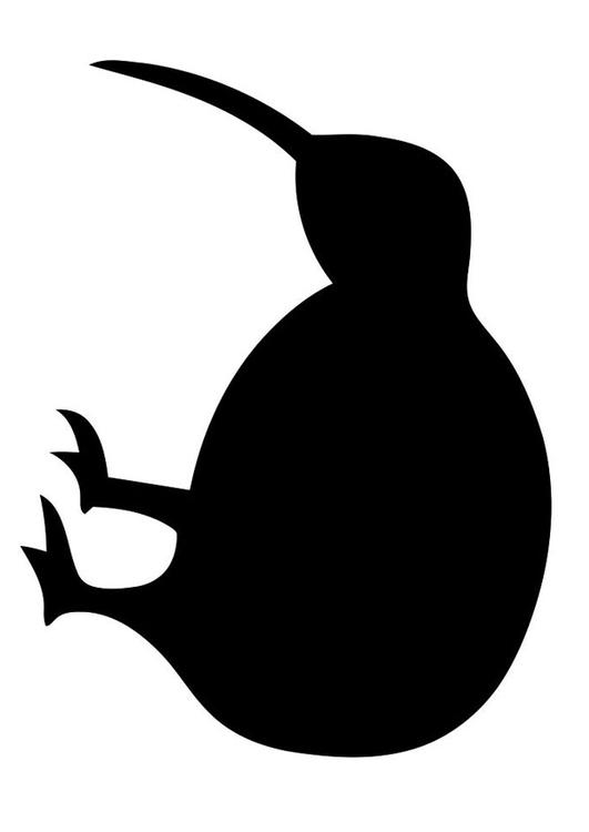 silhouette of bird - kiwi