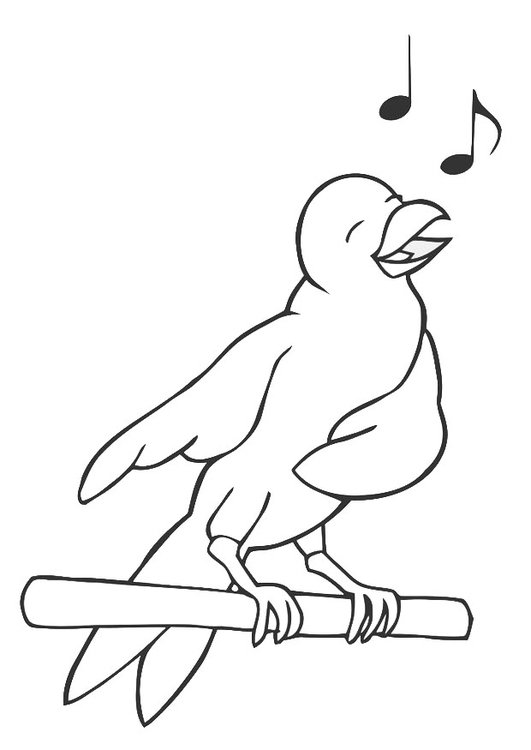 Coloring page singing bird