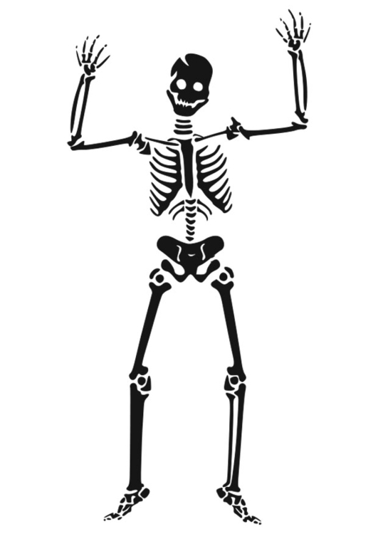 skeleton coloring pages   Skeleton for kids, Skeleton drawings ...   750x531