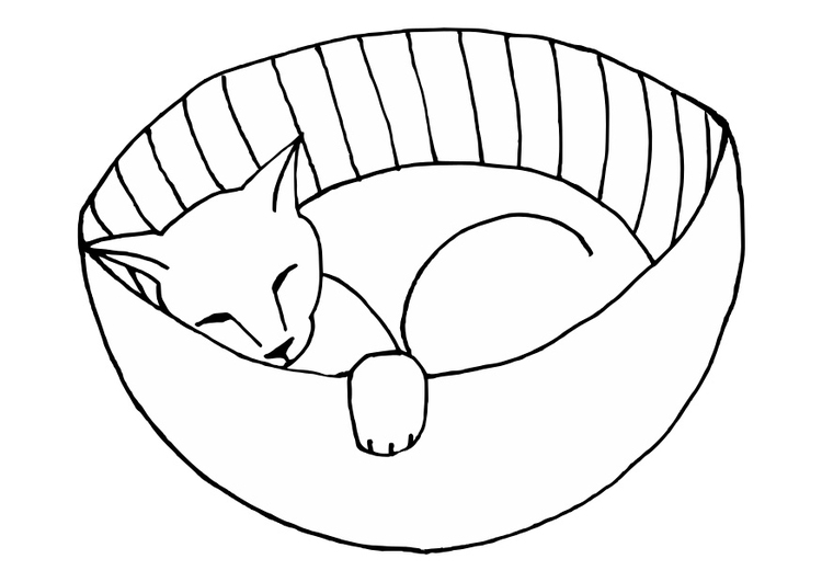 Coloring page sleeping pussy cat