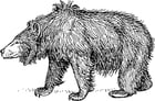 Coloring page sloth bear