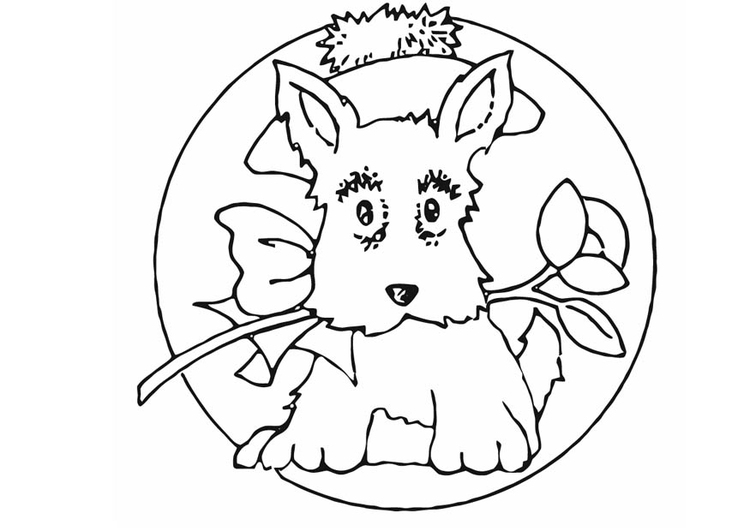 Coloring page small dog