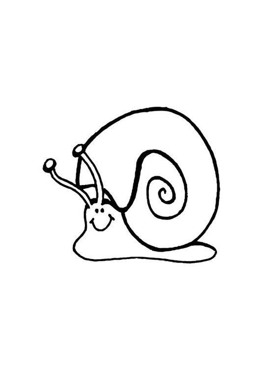 Coloring page snail