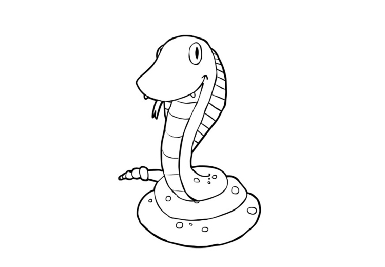 Coloring page snake