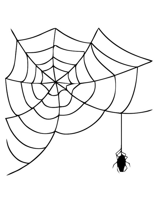 Spider Web Coloring Page - eassume.com