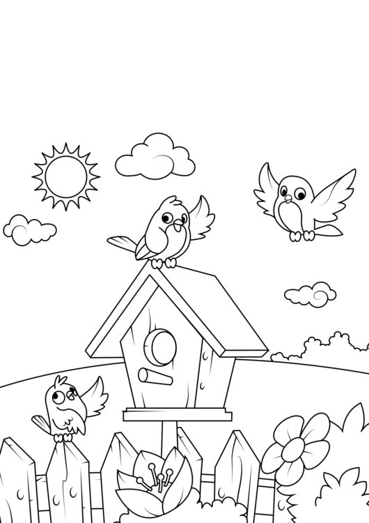 Coloring page spring, birdhouse