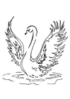 Coloring pages swan