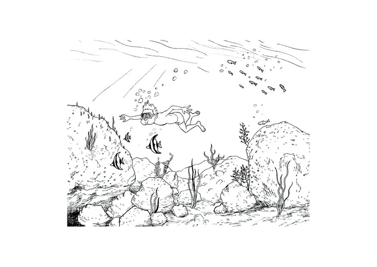 Coloring page swimming under water