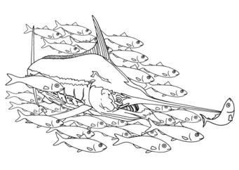 Coloring page swordfish in a school of fish