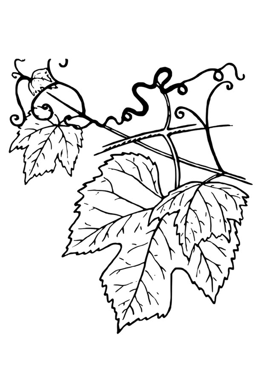 Coloring page tendril