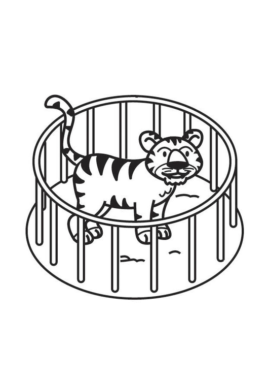 Coloring Page Tiger in Cage - free printable coloring pages