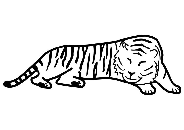 Coloring page tiger sleeping
