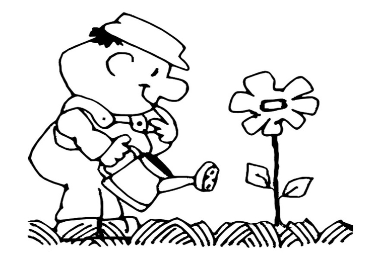 Coloring page to water the flowers