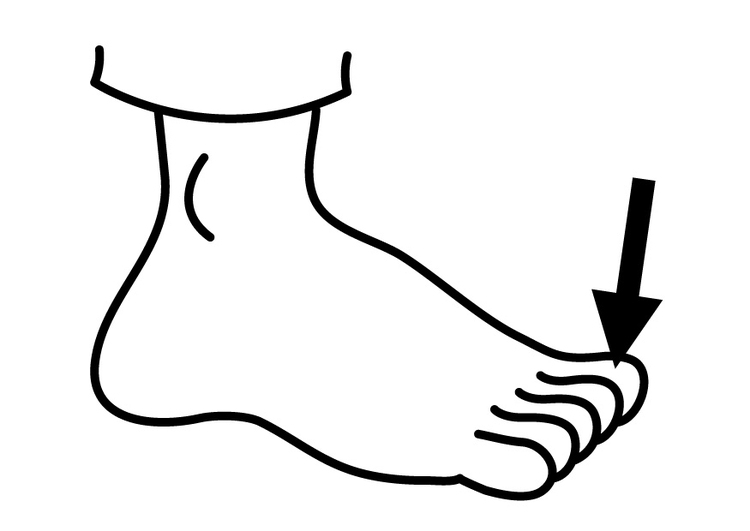 Coloring page toe