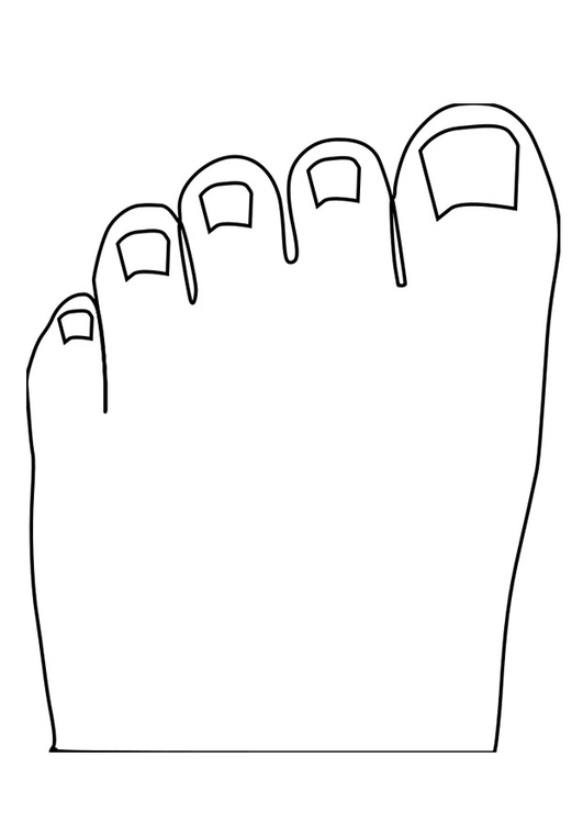 Coloring page toes