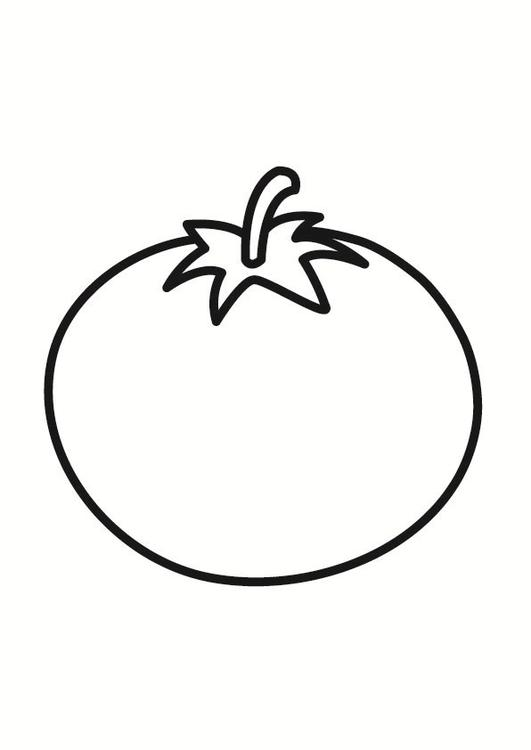 Coloring page tomato img 23243 for Tomato plant coloring page