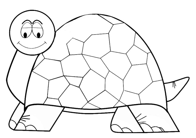Coloring page tortoise