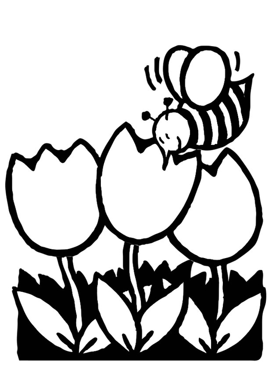 Coloring page tulips with honeybees