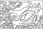 Coloring pages Turtle
