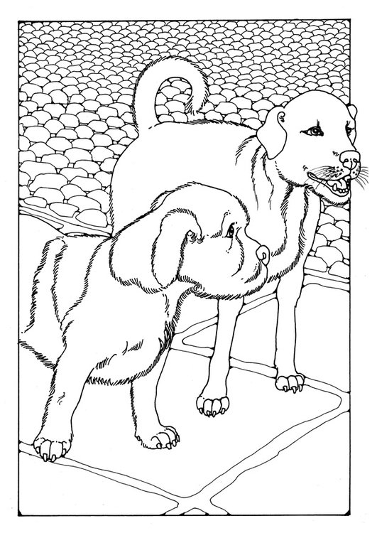 Coloring page two dogs
