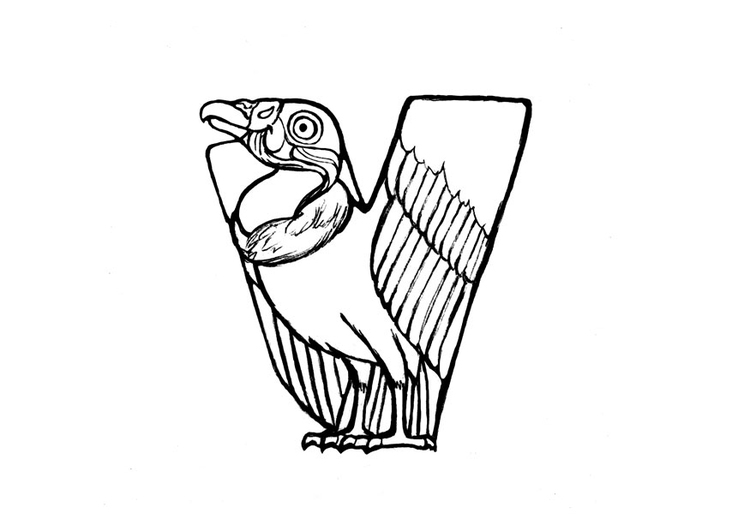 Coloring page v-vulture
