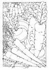 Coloring page Vegetables