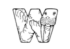 Coloring page w-walrus