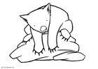 Coloring pages wombat