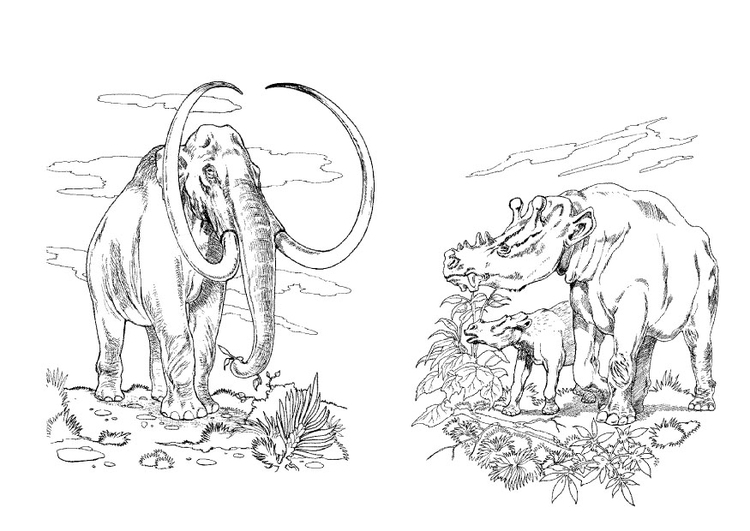 Coloring page wooly mammoth