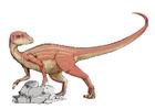 Image Abrictosaur dinosaur
