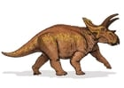 Images Anchiceratops dinosaur