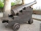 Photo cannon
