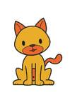Image cat