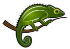 Image chameleon