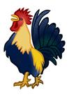Image cockerel