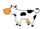 Images cow